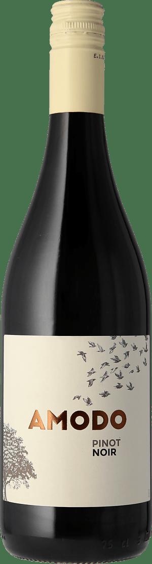 Amodo Pinot Noir 2020 Pinot Noir