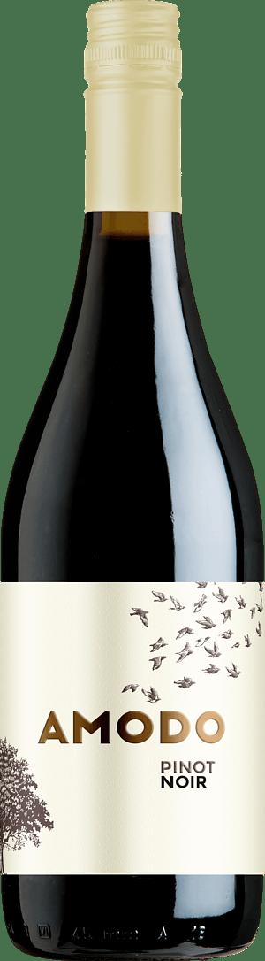 Amodo Pinot Noir 2019 Pinot Noir