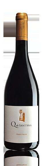 Q de Sant'Ana Pinot Noir 2010 Pinot Noir