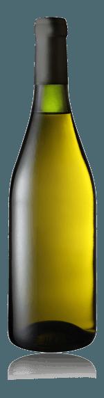 Blank Sauvignon Blanc 2018 Sauvignon Blanc 100% Sauvignon Blanc Loire