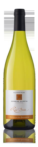 vin Domaine Quintin Rive Droite 2015 Sauvignon Blanc
