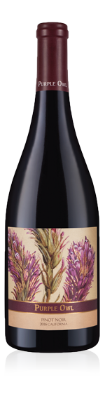 Purple Owl Pinot Noir 2016