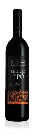 vin Terras DO PÓ Reserve Red 2016 Castelão