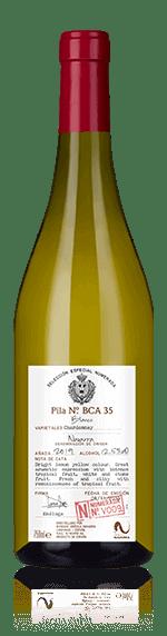 Selección Numerada v9 Navarra Chardonnay 2019 Chardonnay 100% Chardonnay Navarra