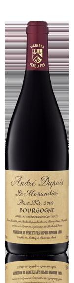 Andre Dupuis Merrandier Bourgogne Pinot Noir 2009 Pinot Noir