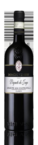 Domini Veneti Vigneti di Jago Amarone 2007 Blend