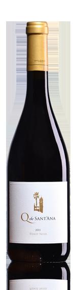 Q De Sant'Ana Pinot Noir 2011 Pinot Noir