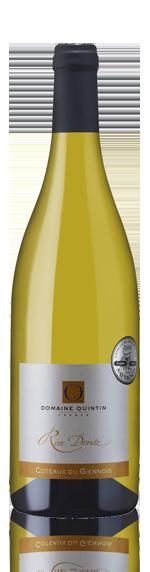 Domaine Quintin Rive Droite 2013 Sauvignon Blanc