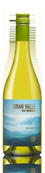 Gran Valle De Niebla Sauvignon 2012 Sauvignon Blanc