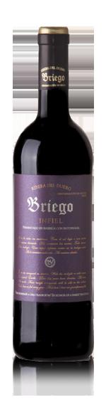 vin Bodegas Briego Infiel 2005 Tempranillo