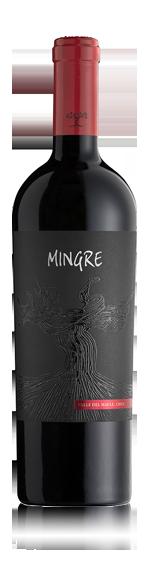 vin Julio Bouchon Mingre 2010 Carmenère