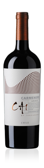 TerraNoble Premium Ca1 Carmenere 2012
