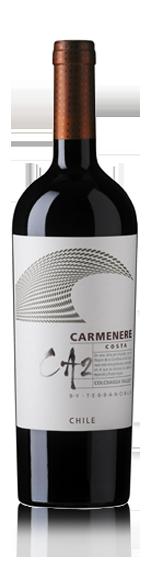 vin TerraNoble Premium Ca2 Carmenere 2012 Carmenère