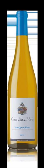Casal Santa Maria Sauvignon Blanc 2013 Sauvignon Blanc